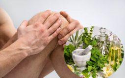 Bí quyết chữa thoái hóa khớp gối bằng thuốc Nam hiệu quả nhất