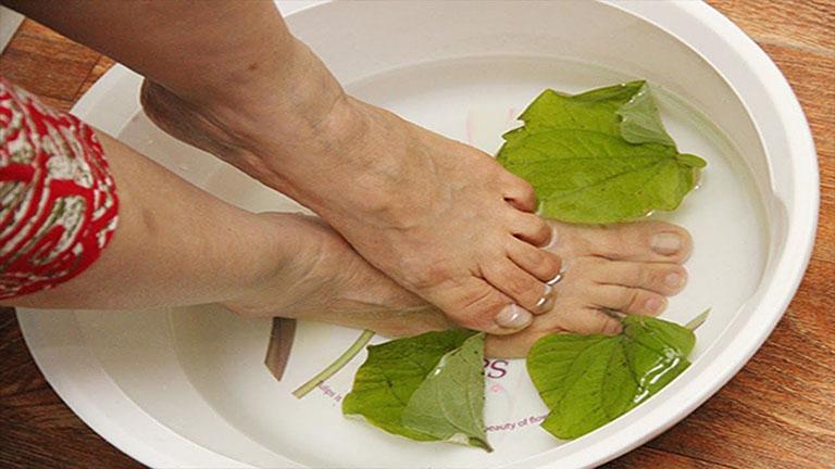 Cách chữa thoái hóa khớp gối bằng lá lốt với việc ngâm chân khá an toàn và dễ thực hiện