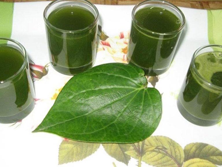 Uống nước lá lốt giúp chữa bệnh liên quan đến xương khớp hiệu quả