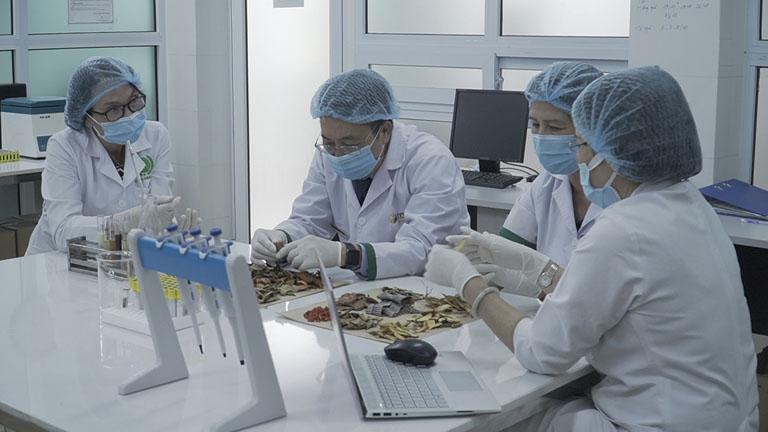 Các bác sĩ Quân Dân 102 nghiên cứu giải pháp thải độc từ thảo dược